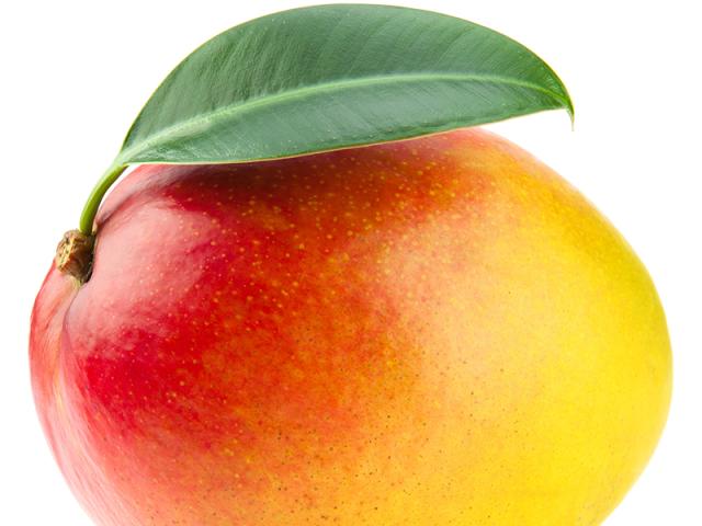 mango 6.png