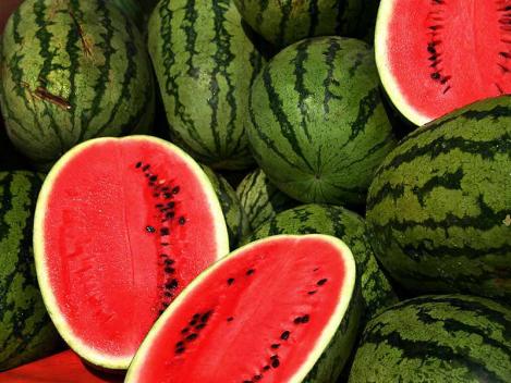 melon 4.png